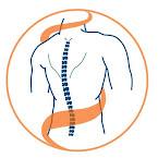 """Медичний центр: Центр рухливої спини """"Motus tergum"""""""