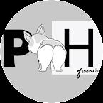 Груминг салон: PET HUB