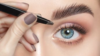 Lash and Brow business
